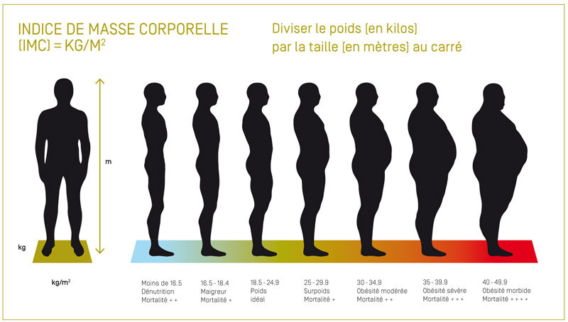 indice de masse corporelle et obésité
